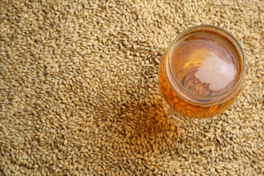 Beer Glass All Grain Malt
