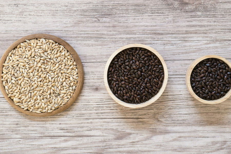 What are specialty malts in brewing?