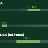 Citra Hops Flavour Profile