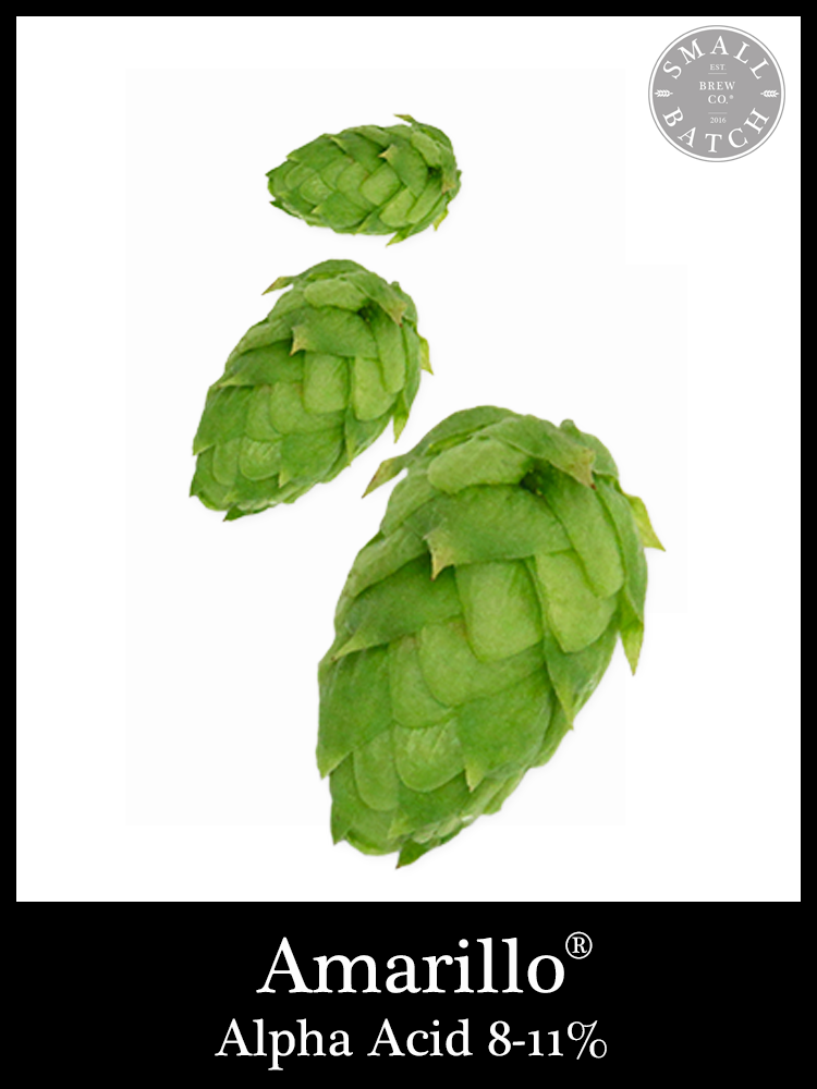 Small Batch Brew Hops Amarillo