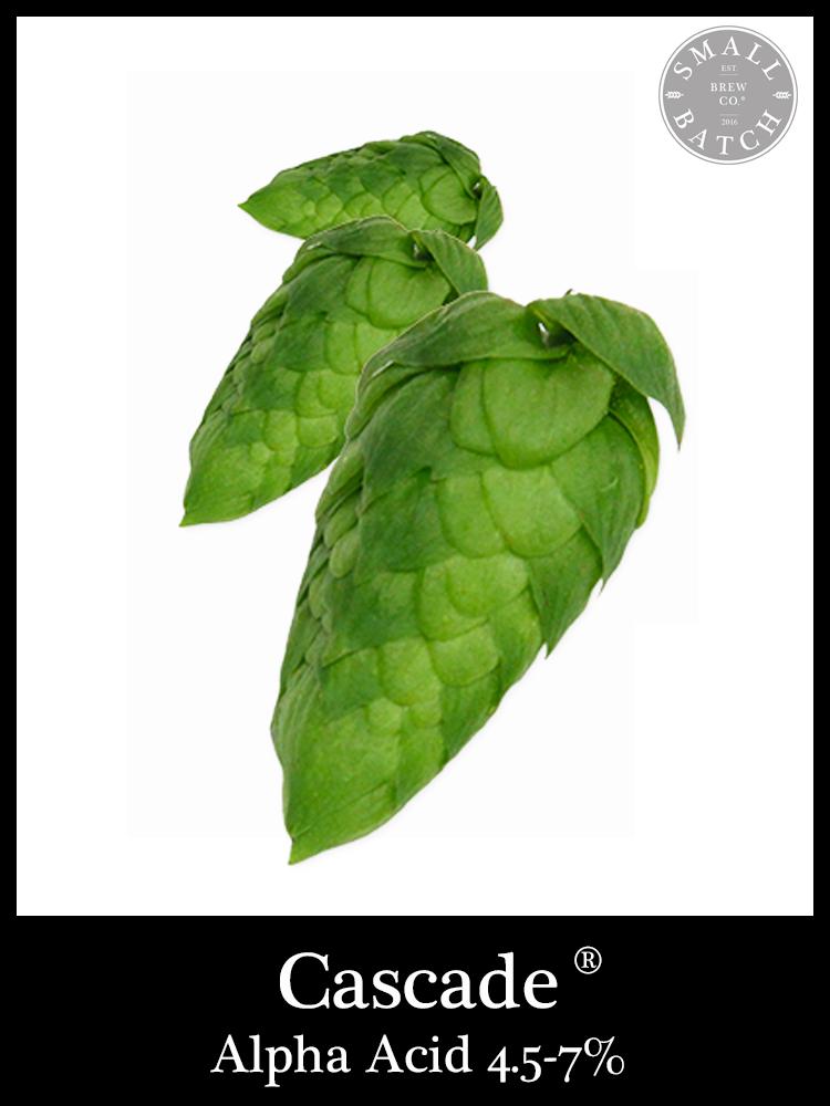 50g Chinook Hop Pellets Hops Alpha Acid 12.0-14.0/% USA Home Brew