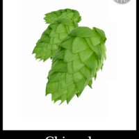 Small Batch Brew Hops Chinook