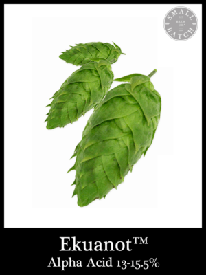 Small Batch Brew Hops Ekuanot