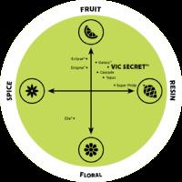 Vic Secret Hops Flavour Wheel