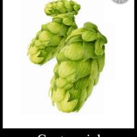 Bulk Centennial Hops 500g - Small Batch Brew