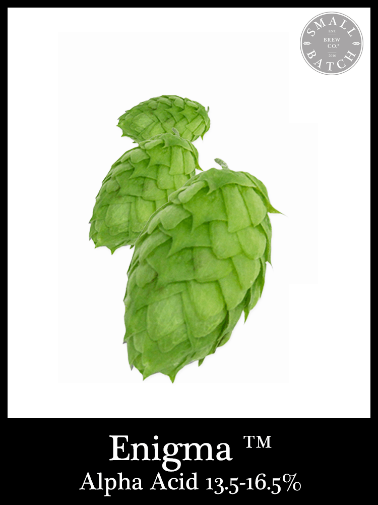 Bulk Enigma Hops - Small Batch Brew