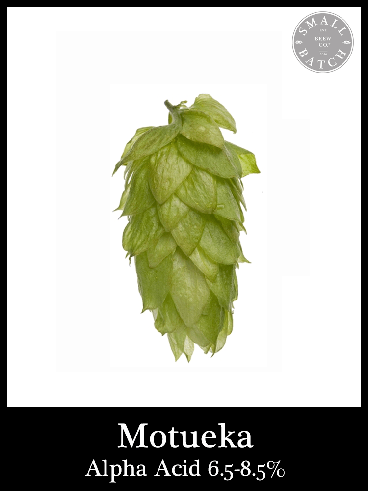 Bulk Motueka Hops - Small Batch Brew